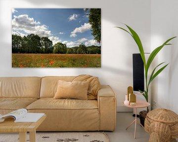 Een veld vol klaprozen met bomen aan de rand van het weiland en een mooie lucht met wolken, Hollands van Lieke van Grinsven van Aarle