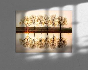 Wielrenner en Bomen tijdens Zonsondergang van Emre Kanik