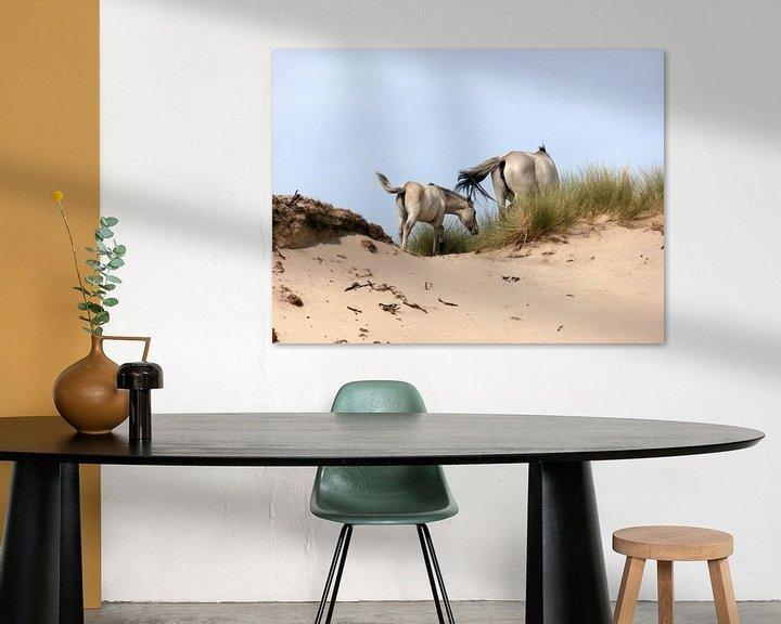 Sfeerimpressie: Konik horses van Jon Houkes