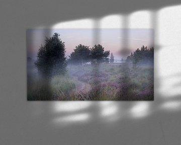 Bodennebel auf der Heide von Manja van der Heijden