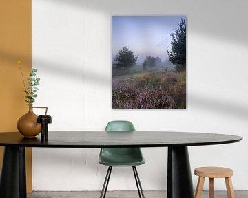 Heidekraut mit Morgennebel von Manja van der Heijden