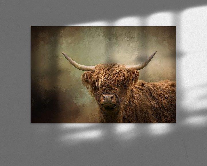 Sfeerimpressie: Schotse Hooglander van Diana van Tankeren