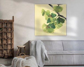 Gingko-Blätter II Dunkel, Chris Paschke von Wild Apple