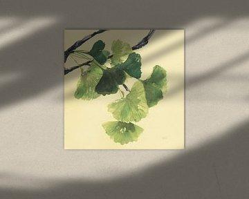 Gingko Leaves I Dunkel, Chris Paschke von Wild Apple