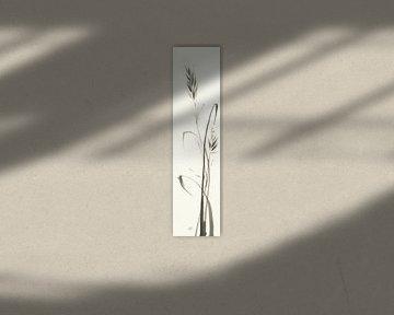 Wild Grass II, Chris Paschke von Wild Apple