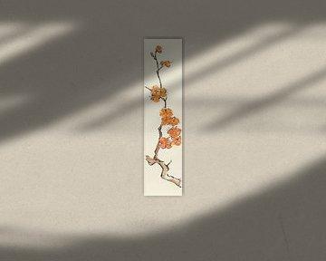 Winter I - Orange Plum Blossom, Chris Paschke von Wild Apple