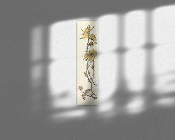 Autumn I - Gelbe Chrysantheme, Chris Paschke von Wild Apple