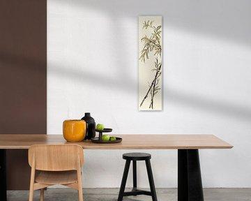 Summer II - Avocado Bambus, Chris Paschke von Wild Apple