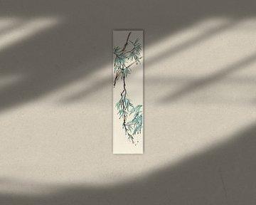 Summer I - Teal Bambus, Chris Paschke von Wild Apple