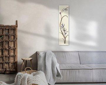 Spring II - Lavendel-Orchidee, Chris Paschke von Wild Apple