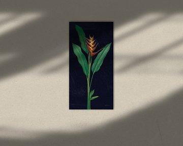 Drastische Tropical IV, Sue Schlabach von Wild Apple