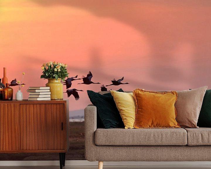 Beispiel fototapete: Kraniche ( Grus grus) im Flug am frühen Morgenhimmel von wunderbare Erde