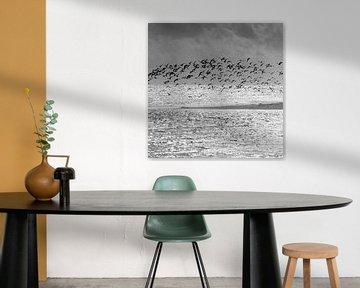 Birds van Carla Vermeend