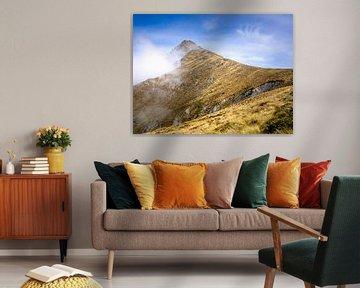 Neuseeland - Queenstown - Der Gipfel des Mount Ben Lomond von Rik Pijnenburg