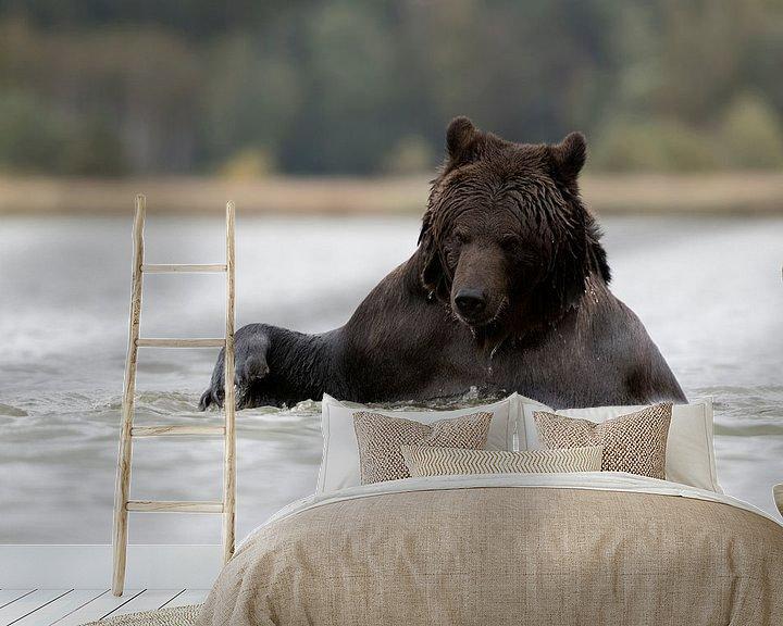 Beispiel fototapete: Braunbär ( Ursus arctos, Europäischer Braunbär) beim Bad, Europa. von wunderbare Erde