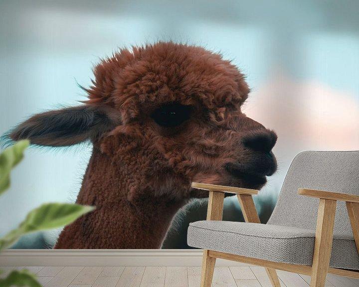 Beispiel fototapete: Alpaka von Dustin Musch