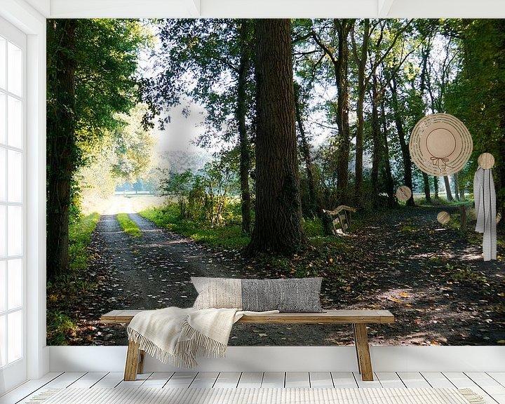 Sfeerimpressie behang: Tweesprong in het bos van Wieland Teixeira
