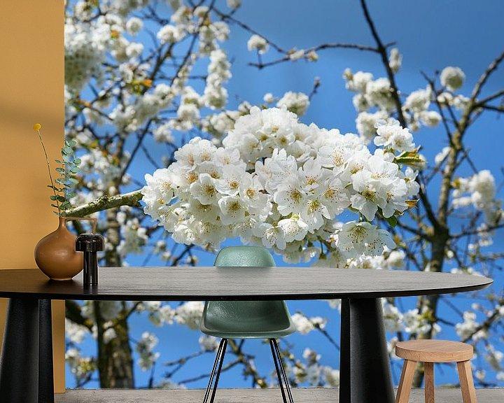 Sfeerimpressie behang: Perenbloesem in het voorjaar van Fred Roest
