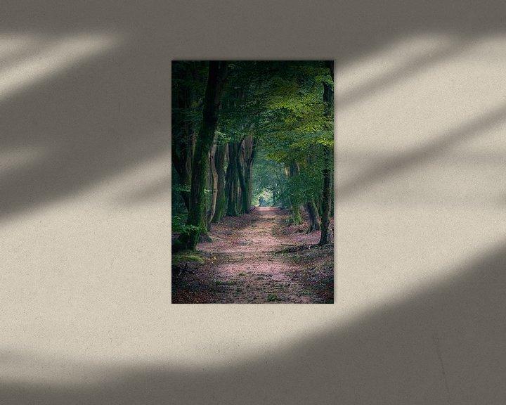 Sfeerimpressie: Speulderbos 3 van Thom Brouwer
