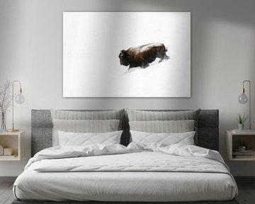 Amerikanischer Bison ( Bison bison ) stürmt durch Tiefschnee einen Hang hinab, Yellowstone NP, USA. von wunderbare Erde