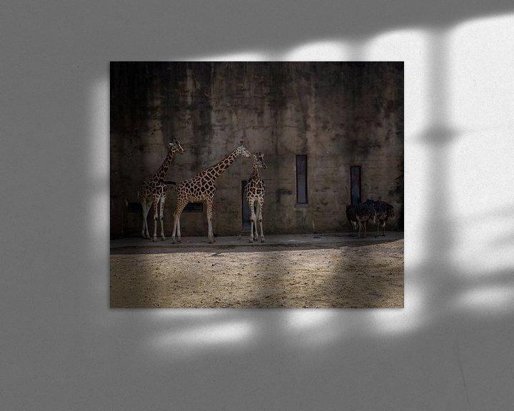 Beispiel: Giraffen- und Straußen-Anhänger von Arash Mahdawi Nader