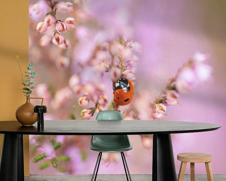 Sfeerimpressie behang: Lieveheersbeestje in de bloeiende heide van KB Design & Photography (Karen Brouwer)