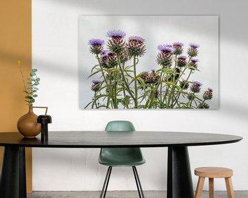 Blühende Artischockenpflanze aus nächster Nähe von Ruud Morijn