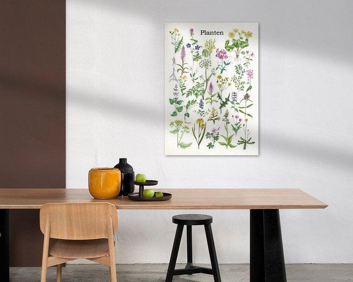 Sfeerimpressie: Planten van Jasper de Ruiter