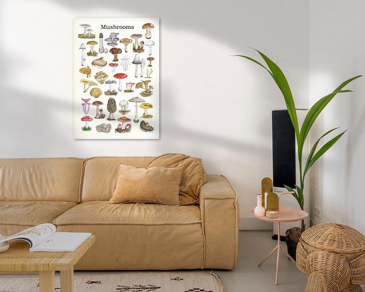 Sfeerimpressie: Mushrooms van Jasper de Ruiter