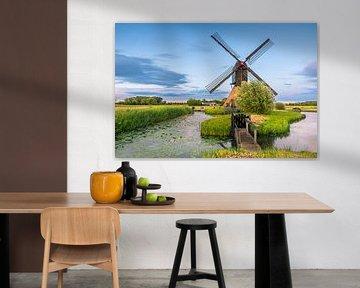 Moulin à vent de Noordeveld