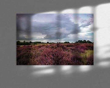 Auf der Heide von Johan Mooibroek