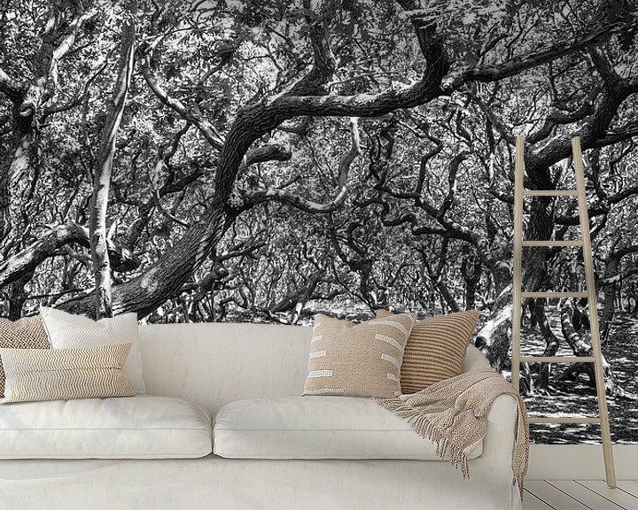 Sfeerimpressie behang: Into the woods van Tonia Beumer