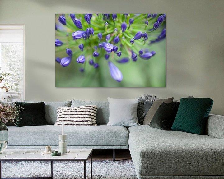 Sfeerimpressie: the color purple van Tonia Beumer