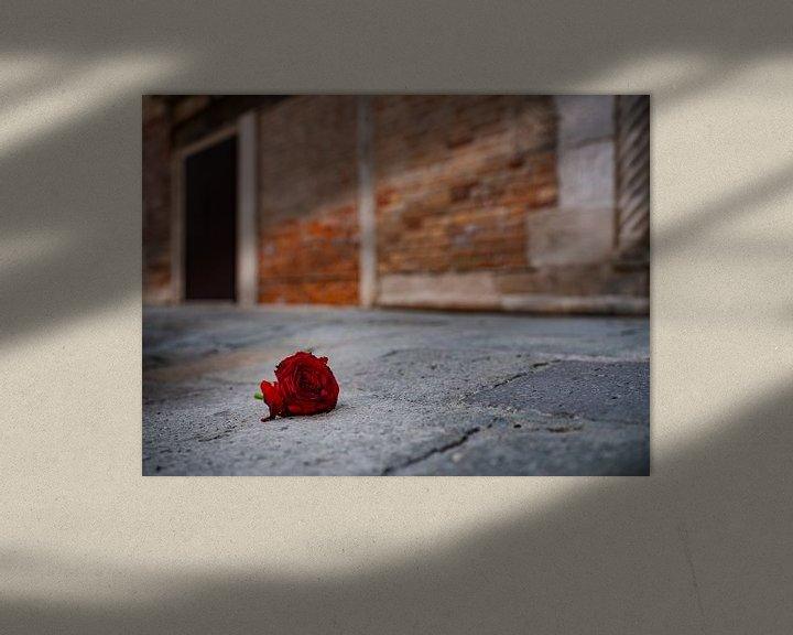 Beispiel: Rote Rose von Andreas Müller