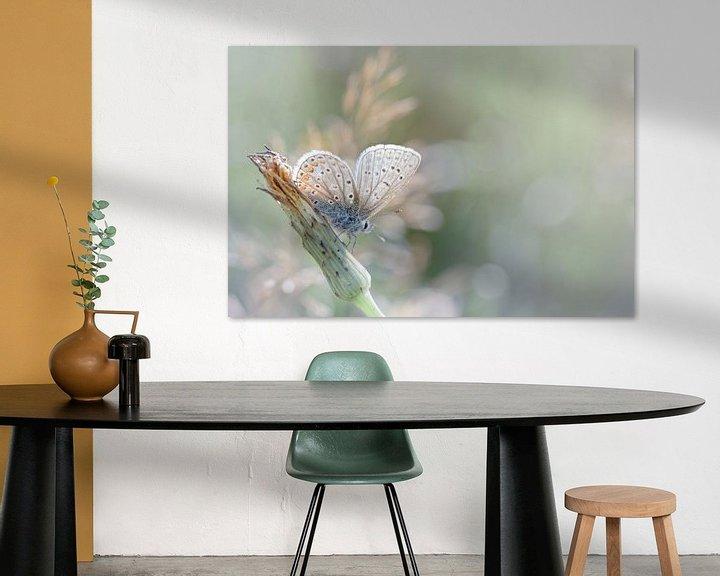 Sfeerimpressie: Zonnebadende vlinder ... (Blauwe versie) (vlinder, zomer, natuur) van Bob Daalder