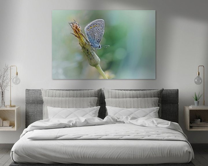 Sfeerimpressie: Free your mind ....... (Blue version) (vlinder, Zomer, natuur) van Bob Daalder