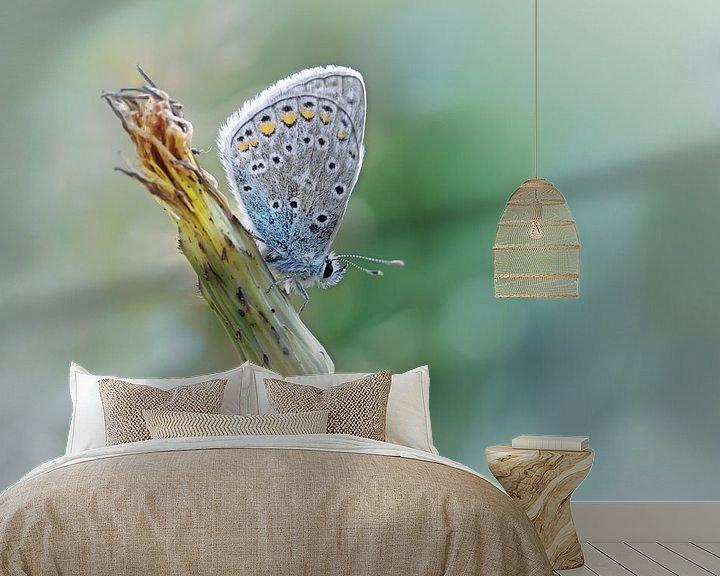 Sfeerimpressie behang: Free your mind ....... (Blue version) (vlinder, Zomer, natuur) van Bob Daalder