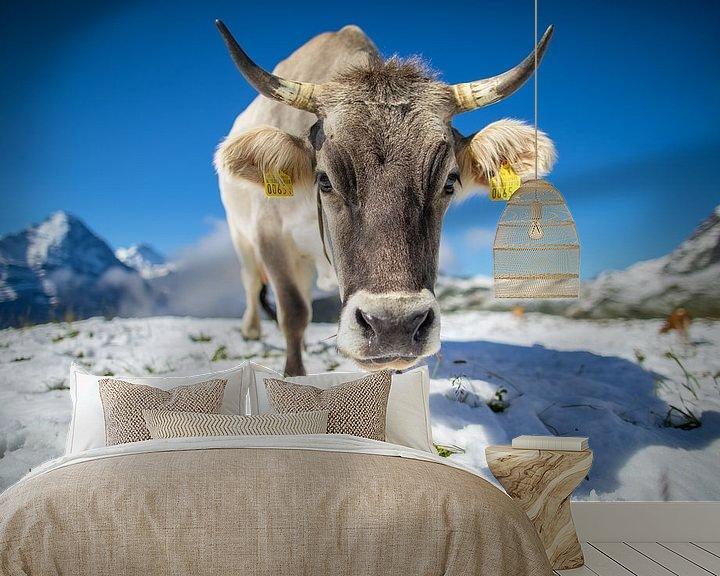 Impression: Vache dans la neige au First, Suisse sur Maurice Haak