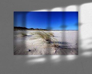 Sur la plage de Sylt
