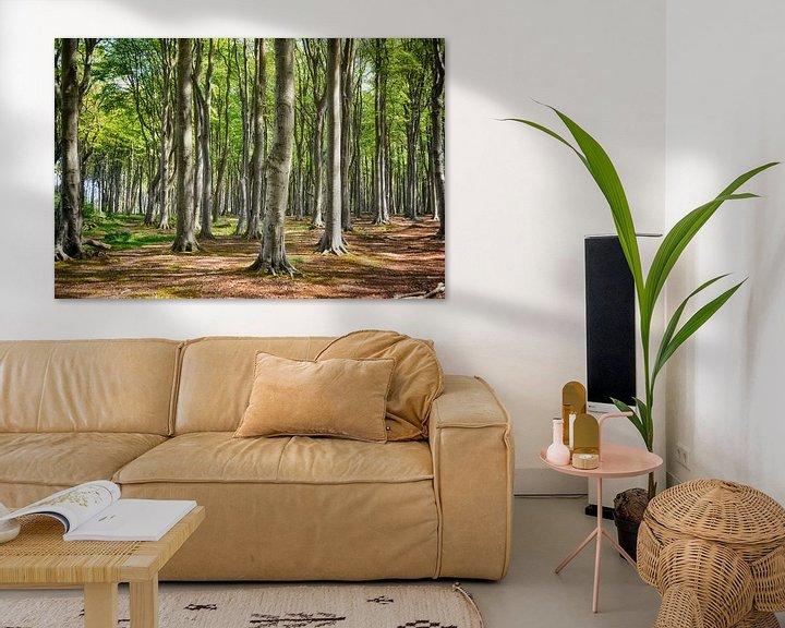 Beispiel: Der Gespensterwald von Nienhagen von Joachim G. Pinkawa