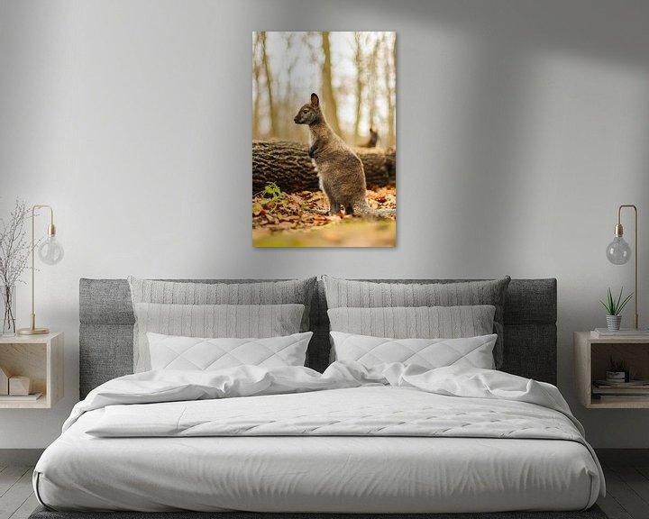 Beispiel: So groß! von Tierfotografie.Harz