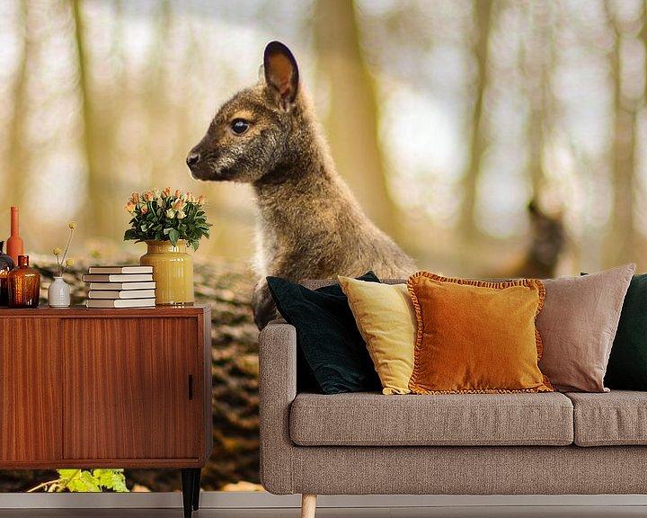 Beispiel fototapete: So groß! von Tierfotografie.Harz