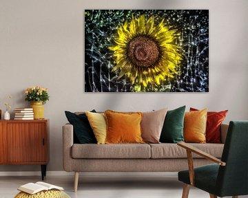 Kirlian aura Aufnahme von Sonnenblumen von MPfoto71