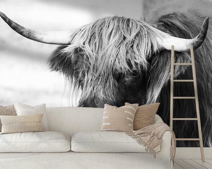 Impression: Portrait en noir et blanc d'une vache Highlander écossaise / boeuf sur KB Design & Photography (Karen Brouwer)