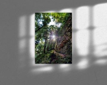 De Mullerthal Trail Luxemburg van Rob van der Teen