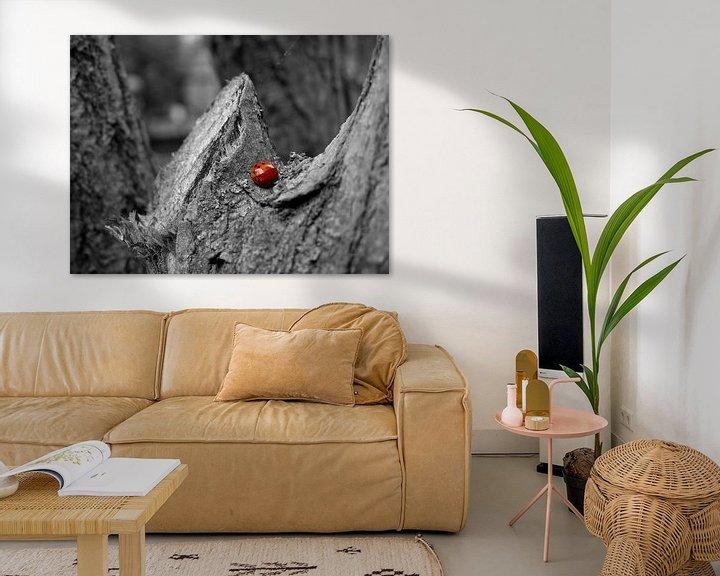 Sfeerimpressie: Lieveheersbeestje van Chloë Luyckx