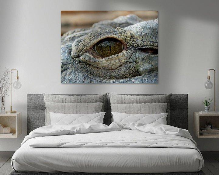 Impression: A travers l'œil de l'alligator sur Chloë Luyckx