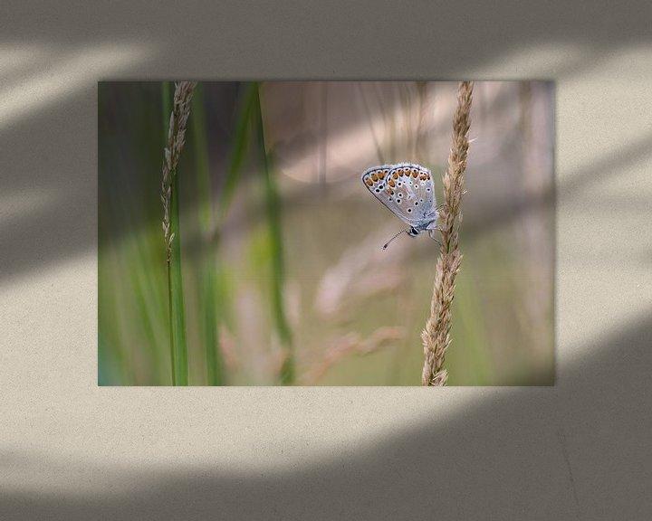 Impression: Bleu marron sur Jan Jongejan