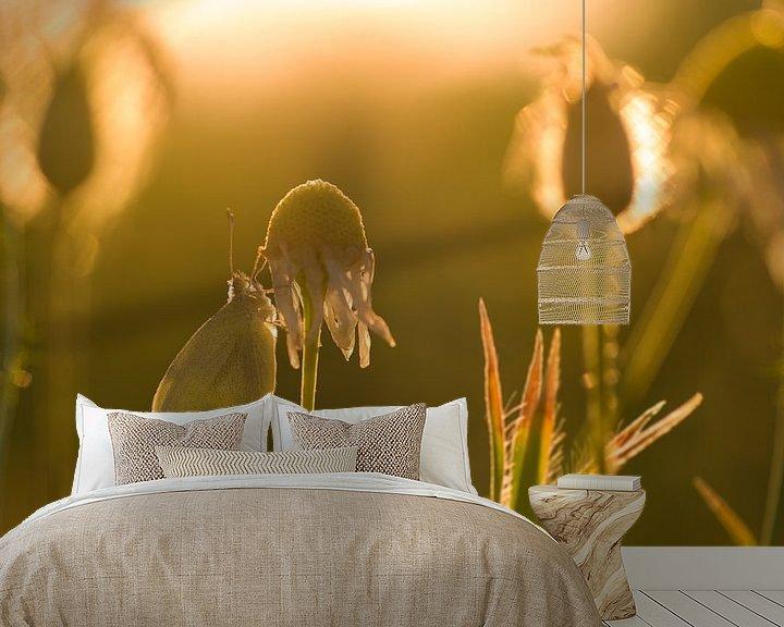 Sfeerimpressie behang: Vlinder in avondlicht van Jan Jongejan