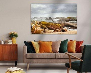 Ruige kust Zuid-Afrika van Corinne Welp